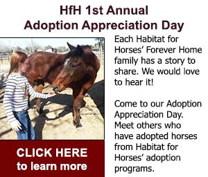 adoptiondayad