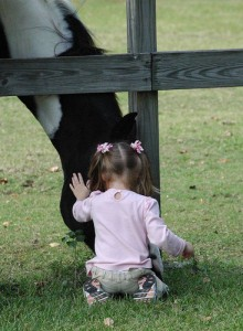 child_horse294679228_f2f2f4c3d1-220x300