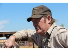 Under new rules buyers like Tom Davis will no longer be able to purchase hundreds of wild horses at a timeRead more: http://www.gazette.com/articles/wild-149324-davis-horses.html#ixzz2H6qAghTl