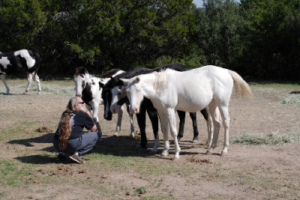 Willie Nelson talking with his horses in Luck, Texas
