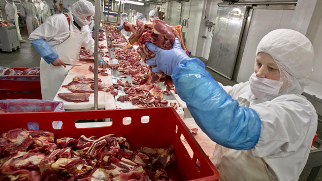 The United States Department of Agriculture is likely to approve a horse slaughtering plant in New Mexico.