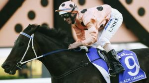 Black Caviar in the process of winning her last race