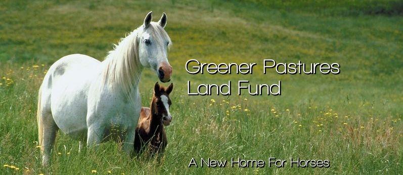 greenerpastureslandfund