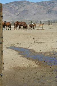 "Monika Courtney Courtney: The grand ""water"" cooling system implemented by BLM."
