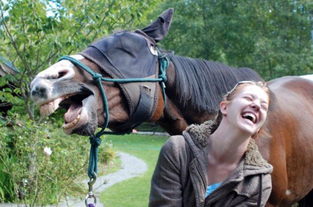 And so I said, why the long face?: The girl in this photo appears to be sharing a joke with the horse