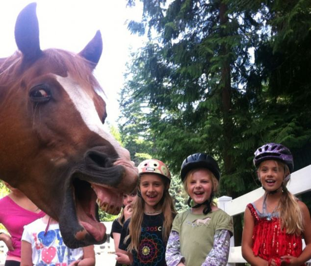 Smile: This group of girls weren't expecting to be upstaged by a slightly manic looking horse