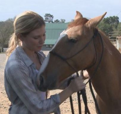 Jackie Donahue wins mustang training competition