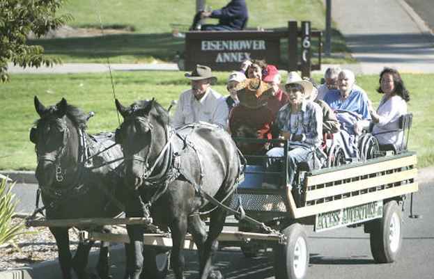 Napa Valley horse carriage rides for vets