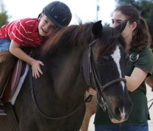 Equine-assisted