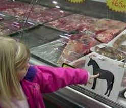 Horse Meat for Sale...