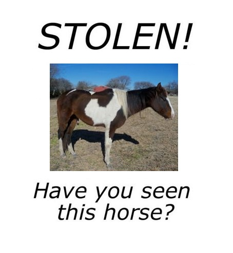 stolen2
