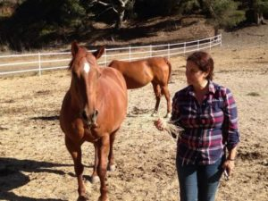 Return to Freedom and AWHPC Founder Neda DeMayo with Ginger, a horse who was literally rescued off the slaughterhouse floor when the last U.S. horse slaughter plant in closed in Texas in 2007.