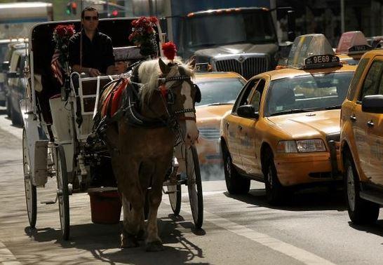 horsescarriage