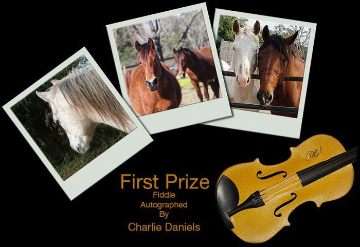 Charlie Daniels autographed fiddle!