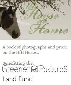 book_horseathome