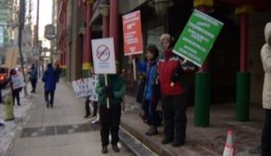 Canadians protest horse cull