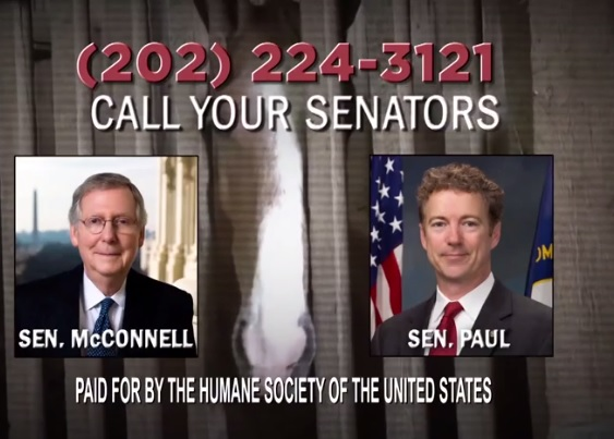 HSUS ad asks the public to call their federal lawmakers and ask them to pass the bill.