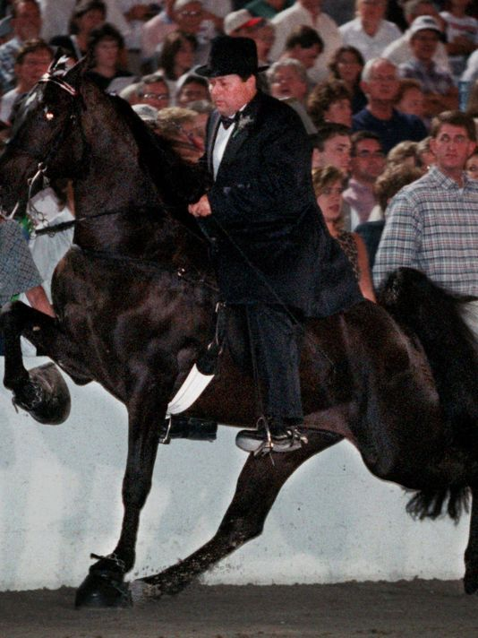 Trainer Jackie McConnell, here seen at Shelbyville's Tennessee Walking Horse Nation al Cele bration, has been banned from the industry for soring horses. (Photo: File / The Tennessean)