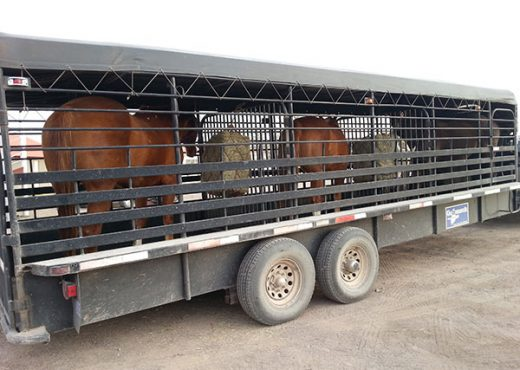 Loaded up and ready to head to the Ranch.