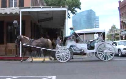 Sacramento horse carriages