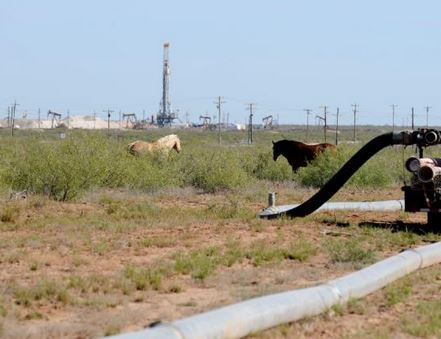 fracking and horses