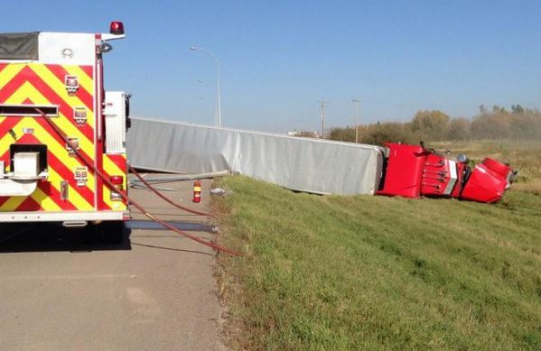 Overturned truck was headed to slaughter house