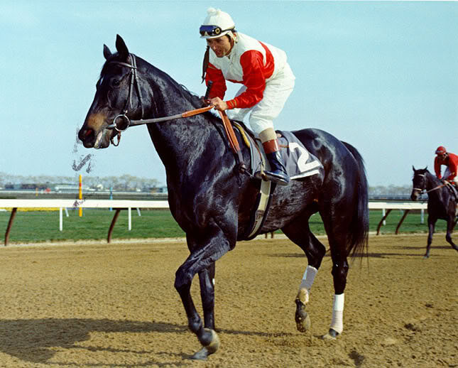 Ruffian as a two-year-old in 1974