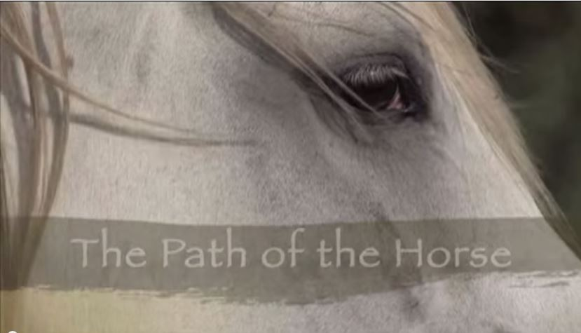 thepathofthehorse