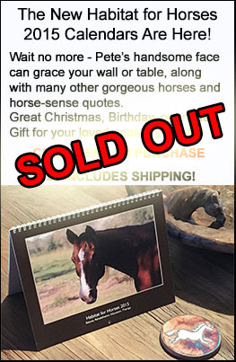 2015 Habitat for Horses Calendars for Sale. Click here to purchase now.