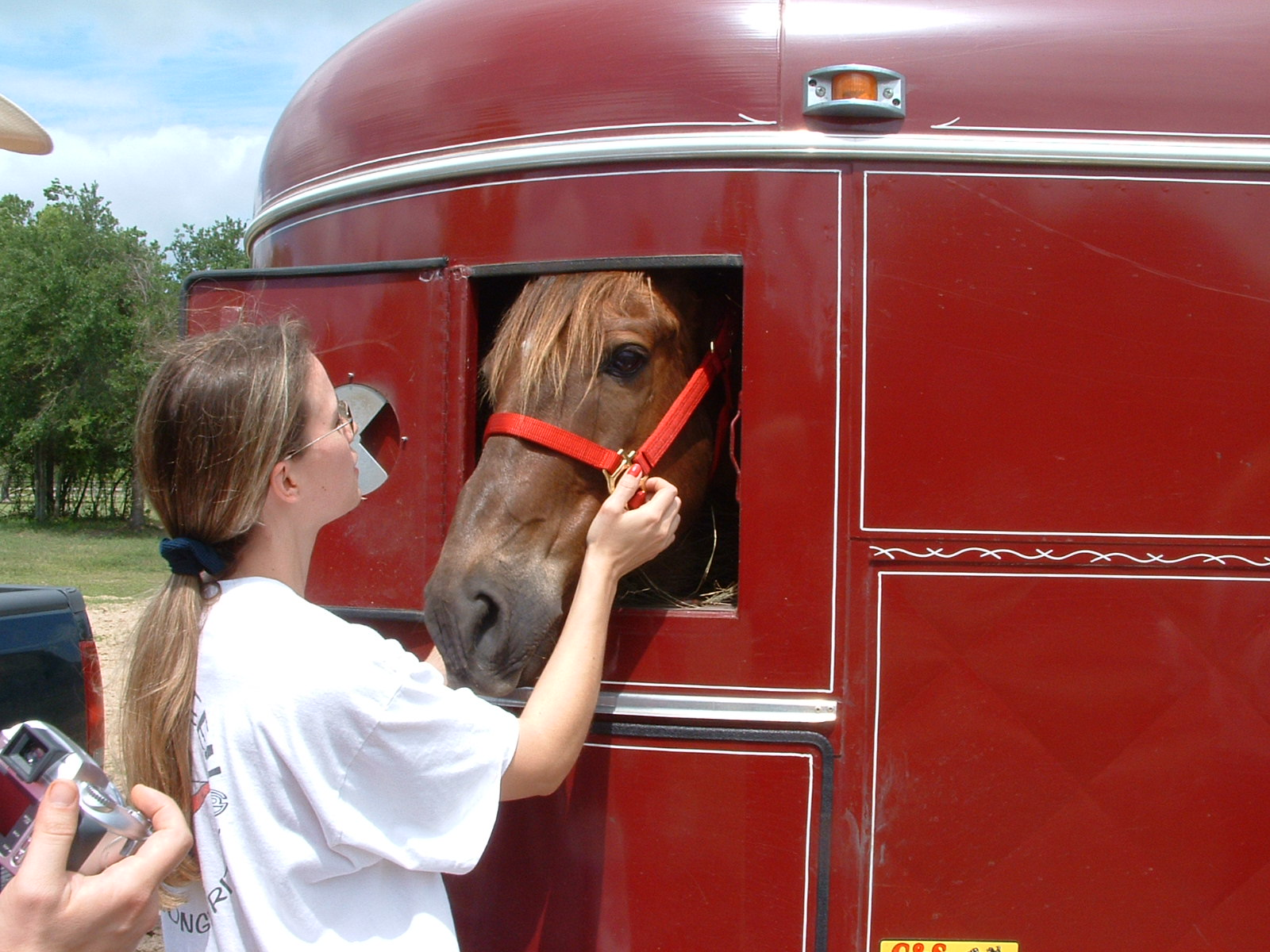Another horse is headed to their new forever home.