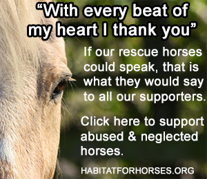 Donate to Habitat for Horses