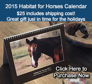 Purchase your 2015 Habitat for Horses Calendar today - click here now