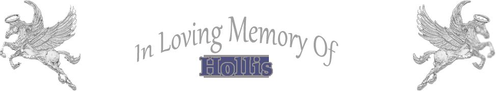 inlovingmemoryofhollis