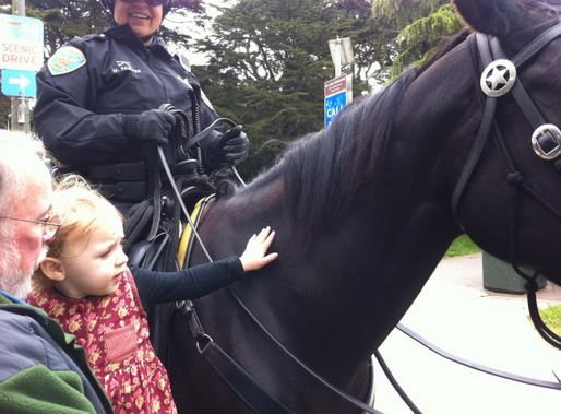 mounted_police