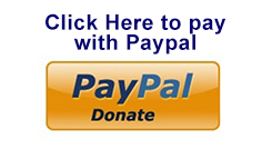 paypal_donatepage