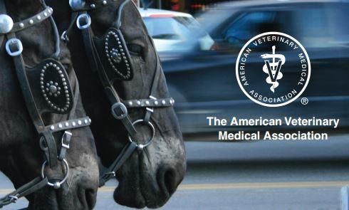 avma_working_horses