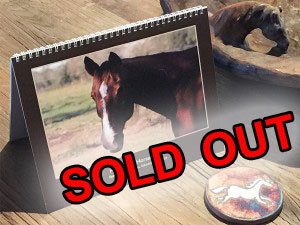 calendar1_sold_out