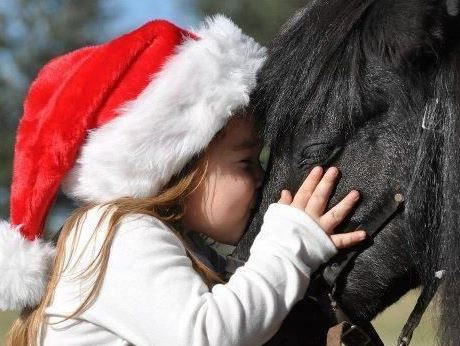little girl and horse Christmas