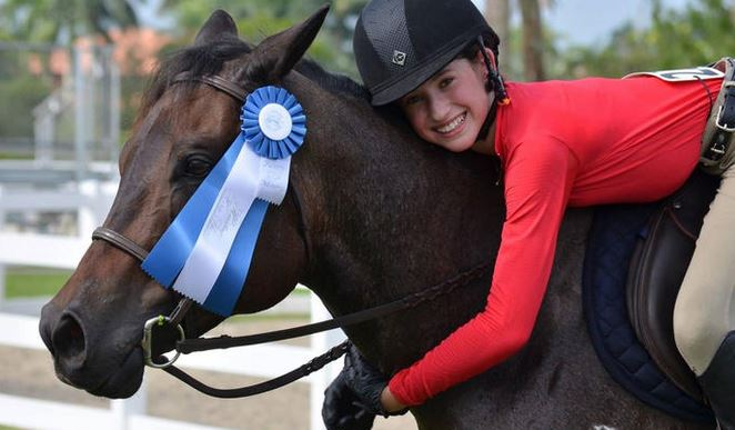 Foxy the horse, shown here at a horse show in 2013 with rider Jamie Buis, died on Monday, Dec., 15, 2014. (Handout) Sun Sentinel