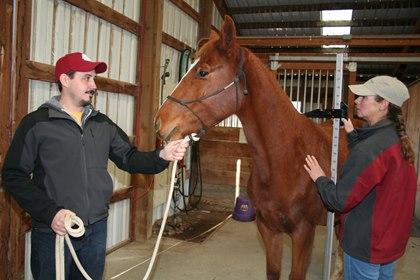 measuring_a_horse