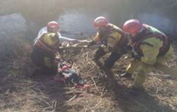 'The horse was very cold and exhausted' Credit: Cambridgeshire Fire and Rescue Service