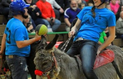 donkey_basketball