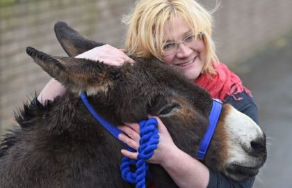 donkeyandwoman