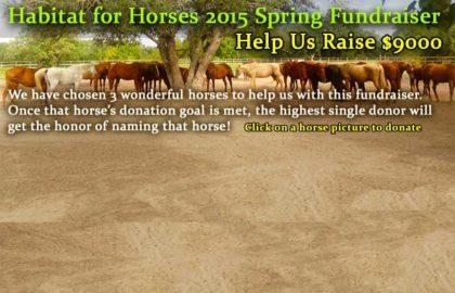 fundraiserhomepage1
