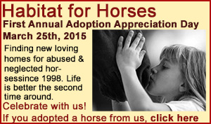 adoptionappreciationday