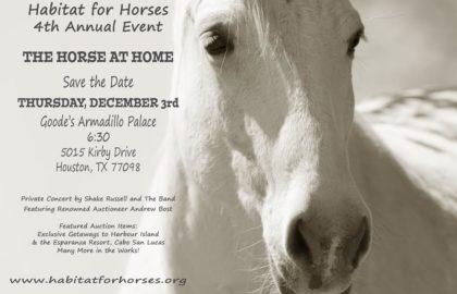 horseathome2015