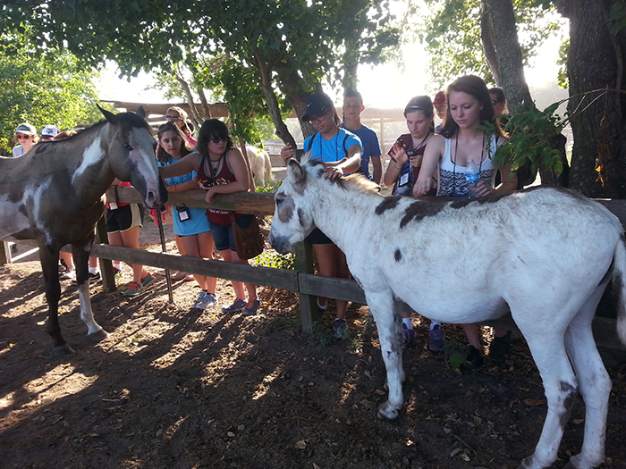 Paco loves to be petted! Sea Camp students enjoyed meeting all the residents at our Hitchcock facility!