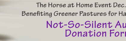 not_so_silent_donate_page_header