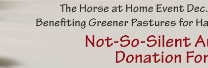 not_so_silent_donate_page_header_red