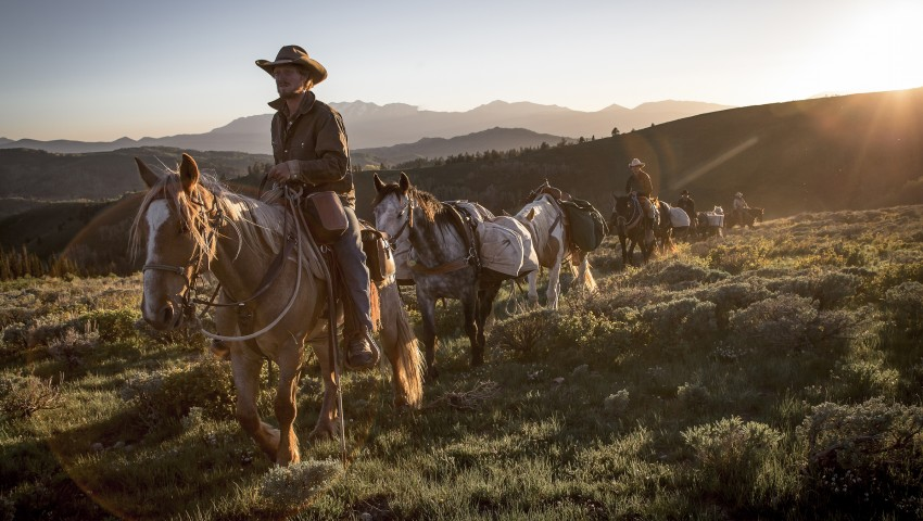 Unbranded Sheds Light On Wild Horse Issues In The West